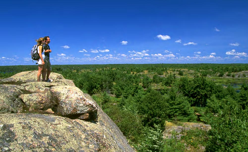 Two people standing at a cliff's edge looking out into a forested landscape.